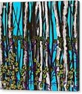 Bright Blue And Birch Acrylic Print