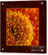 Bright Budding And Golden Abstract Flower Painting Acrylic Print