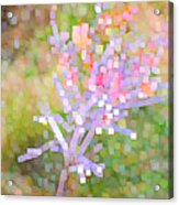 Bright Flower Acrylic Print