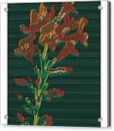 Bright Flowers - 3 Acrylic Print