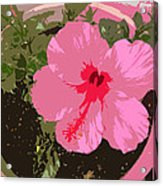 Bright Pink Acrylic Print