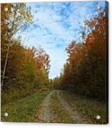 Bright Trail Acrylic Print