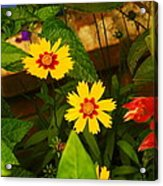Bright Yellow Flowers Acrylic Print