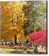 Brilliant Colors In The Cemetery  Acrylic Print