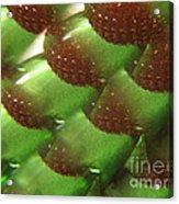 Brilliant Green Abstract 6 Acrylic Print