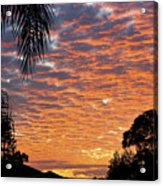 Brilliant Sunset During Winter Acrylic Print