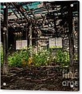 Bring The Outside In 3 Acrylic Print
