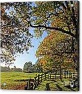 British Autumn Acrylic Print