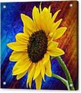 Brocade Daisy Acrylic Print