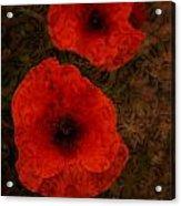 Brocade Textured Poppies Acrylic Print