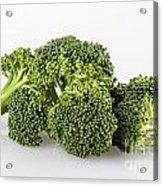 Broccoli Isolated Acrylic Print