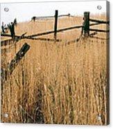 Broken Down Fence Acrylic Print