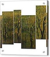 Broken Forest Acrylic Print