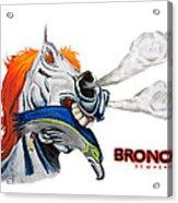 Broncos In Super Bowl Xlviii Acrylic Print