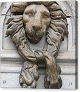 Bronze Lion Acrylic Print