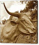 Bronze Longhorn Acrylic Print