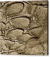 Bronze Mud Patterns 2 Acrylic Print