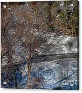 Brook And Bare Trees - Winter - Steel Engraving Acrylic Print