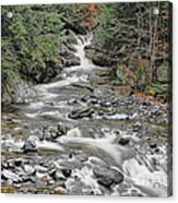 Brook In October Acrylic Print