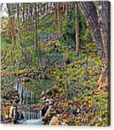 Brook Acrylic Print