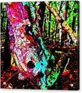 Brook Texture Z 3 Acrylic Print