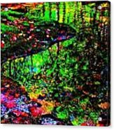 Brook Texture Z 8 Acrylic Print