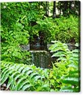 Brook Waterfall Acrylic Print