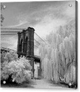 Brooklyn Bridge Willows Acrylic Print