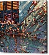 Brooklyn In Fall 2 Acrylic Print