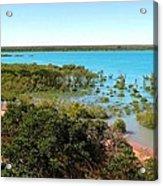 Broome Mangroves Acrylic Print