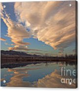 Broomtail Sky Acrylic Print
