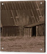 Brown Barns Acrylic Print