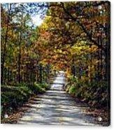 Brown County Lane Acrylic Print