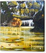 Brown Ducks Near The Waterfall Acrylic Print