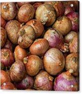 Brown Onions Acrylic Print