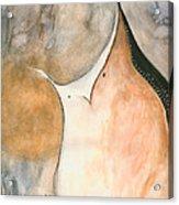 Brown Owl Acrylic Print