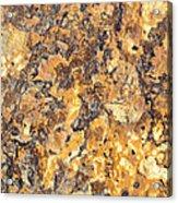 Brown Stone Abstract Acrylic Print