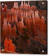 Bryce Canyon 17 Acrylic Print