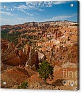 Bryce Canyon Amphitheater  Acrylic Print