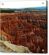 Bryce Canyon In The Afternoon Acrylic Print