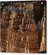 Bryce Canyon National Park Hoodo Monoliths Sunset From Sunrise P Acrylic Print