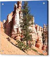 Bryce Canyon Red Fins Acrylic Print