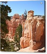 Bryce Canyon  Red Rocks Acrylic Print