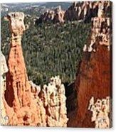 Bryce Canyon - Thors Hammer Acrylic Print