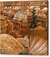 Bryce Zion Landscape Acrylic Print