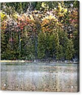 Bubble Pond Acadia National Park Acrylic Print