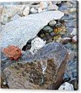 Bubbling Rock Acrylic Print