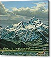 Buck Mountain from Antelope Flat Acrylic Print
