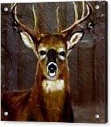 Buck On Slate  Acrylic Print