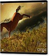 Bucking Horse Acrylic Print